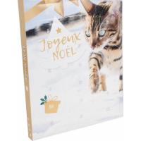 Advent calendar for cats (4)