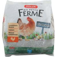 Ecalcium alimento complementario mineral para gallinas