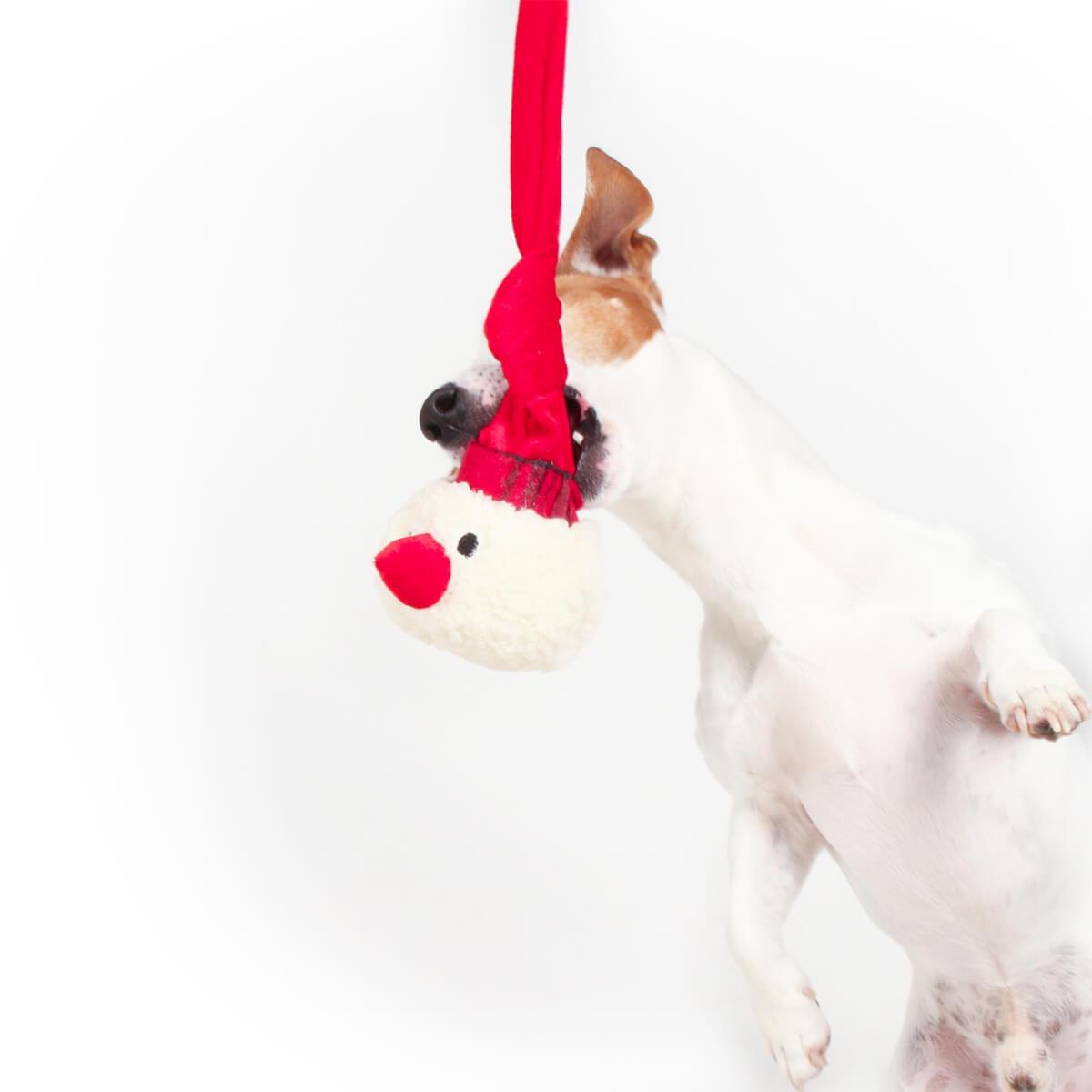 balle pour chiens bonhomme de neige no l jouet pour chien. Black Bedroom Furniture Sets. Home Design Ideas
