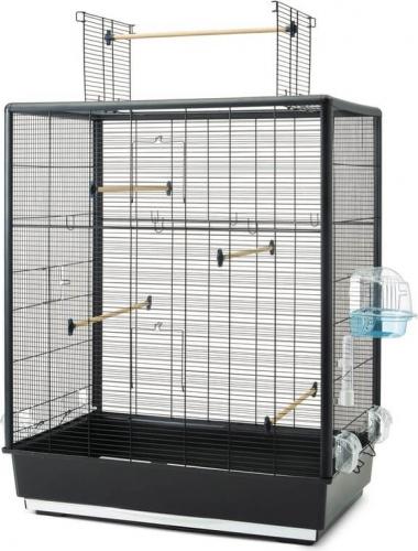 Cage Primo 60 OPEN EMPIRE Knock Down