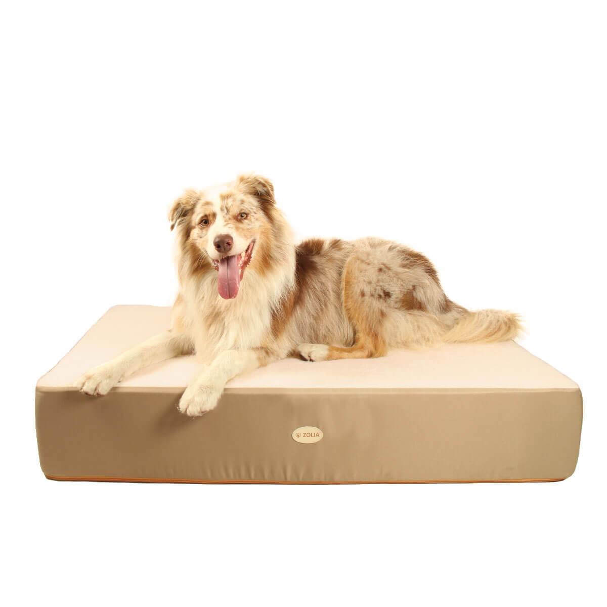 Cochón ZOLIA NAYA 110 cm Maxi espesor para perros_0
