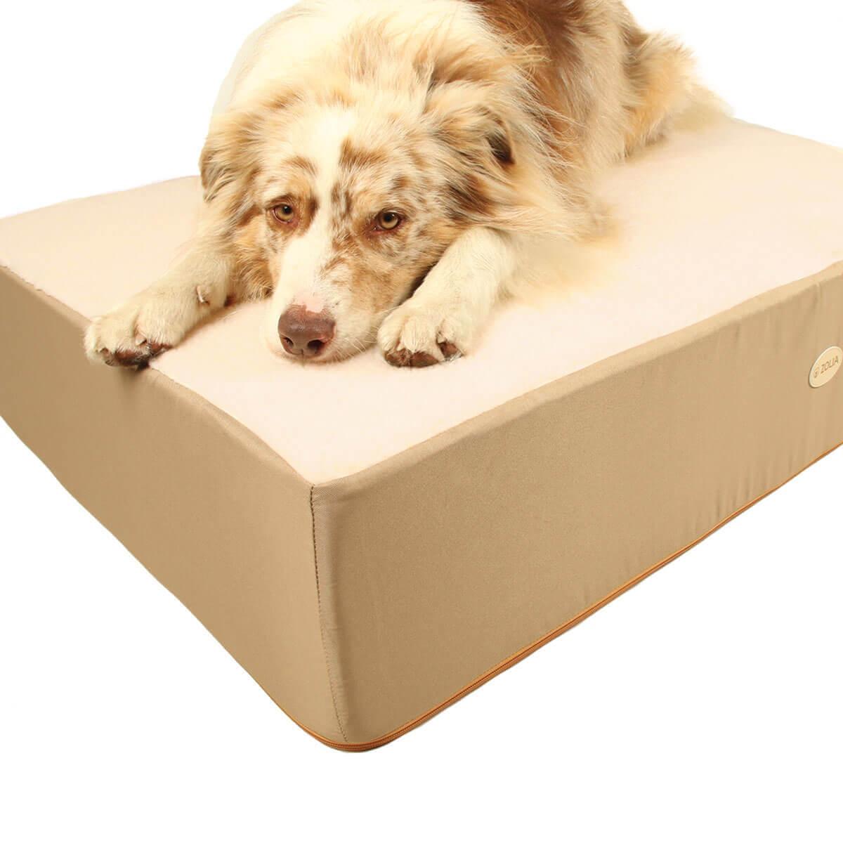 Cochón ZOLIA NAYA 110 cm Maxi espesor para perros_5