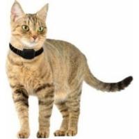 Sistema anti-fuga CANIFUGUE SMALL para gatos e cães pequenos
