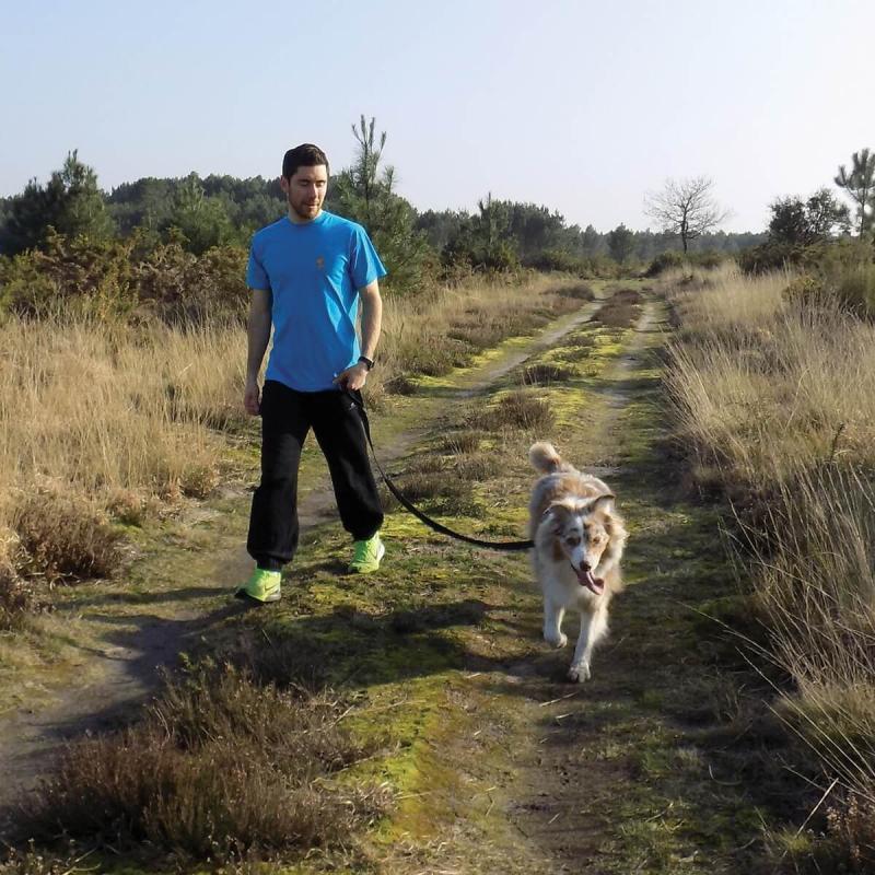 Laisse Footing sécurisée et pratique Softline Zolia amortisseur de chocs pour chien