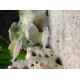 37395_Sable-Aquasand-Nature-Quartz-blanc_de_Emmanuelle_1134437704608502bb7f6d88.41693514