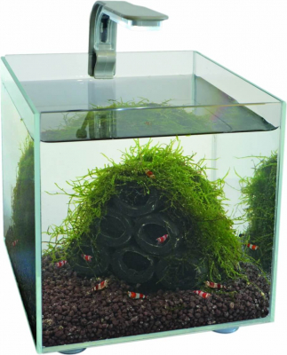 Mini Aquarium SuperFish Shrimp Kit 1.8L