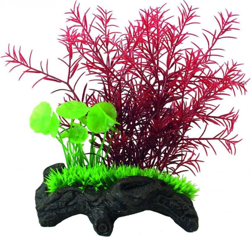 SuperFish Nano Wood Garden - Mini Jardin Aquatique - 3 modèles