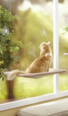 Hamaca  de ventana para gato Oster Sunny Seat