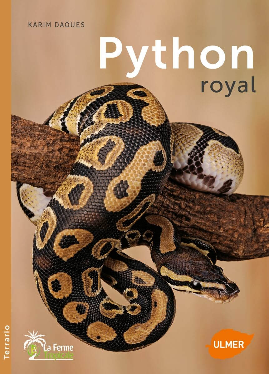 Livre Python royal édition Ulmer_0