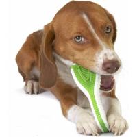 Jouet brosse à dents pour chien Finity Dental Chew - plusieurs tailles