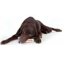 Jouet à mâcher Beyond Bone Petstages