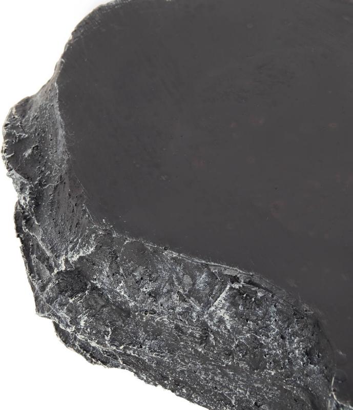 Reptilien Napf REPTIL'US - mittelgroßes Modell