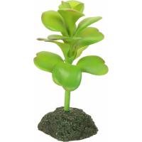 Artificiële planten
