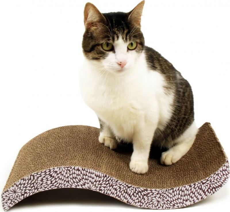 griffoir en carton pour chat zolia flory avec herbe chat. Black Bedroom Furniture Sets. Home Design Ideas