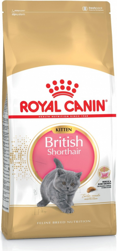 Royal Canin Breed British Shorthair Kitten