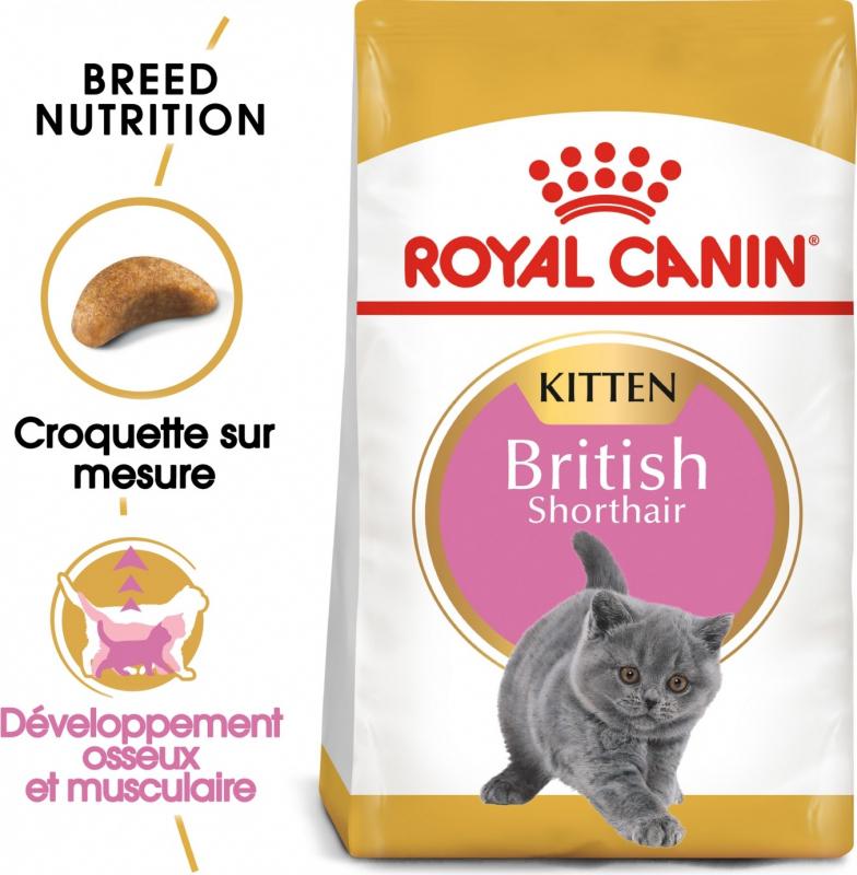 Royal Canin Breed British Shorthair Kitten