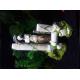 38466_Décor-aquarium-Dieux-et-Colonne-Antique_de_laura_16303637755b4da5db139a13.21052174