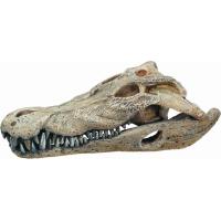 Décoration d'aquarium Crâne de crocodile (1)