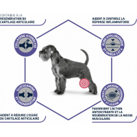 Advance Veterinary Diets Articular Care Senior pour chien +7 ans