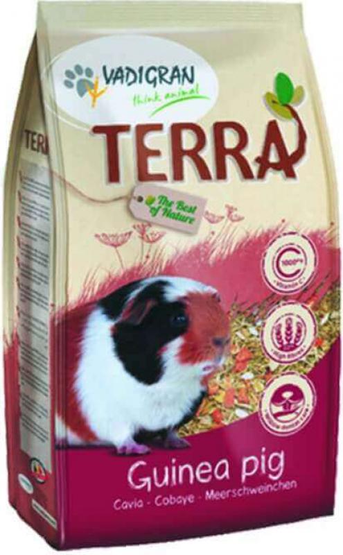 TERRA conejillo de Indias mezcla