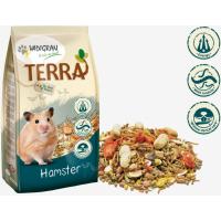 Vadigran Terra hamster