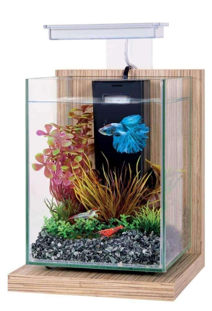 Kit aquarium d coratif wiha 4l bac nano aquarium for Aquarium bac