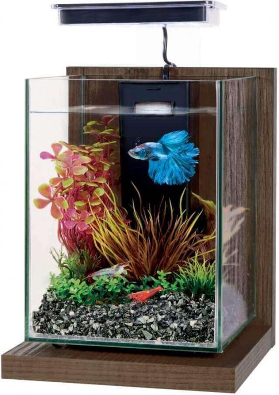 Kit aquarium décoratif Wiha 4L