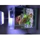 38727_Kit-aquarium-décoratif-Jalaya-9,3L_de_Cristelle_53825864960617646952013.54671539