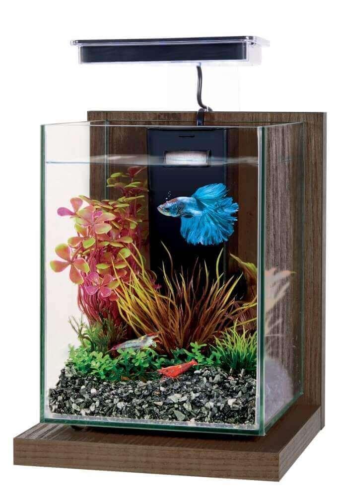 Kit aquarium décoratif Jalaya 9,3L_6