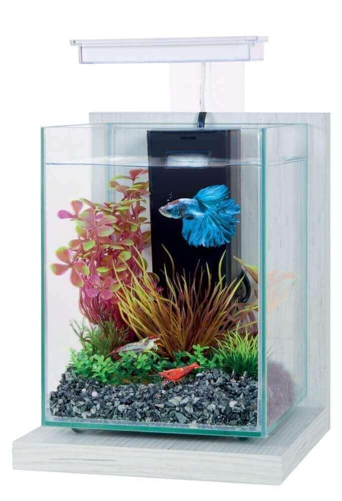 Kit aquarium décoratif Jalaya 9,3L_5