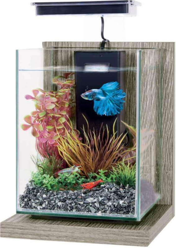 Kit acuario decorativo Jalaya 9.3L