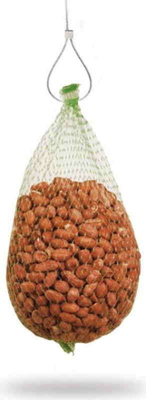 Filet d'arachide décortiquée