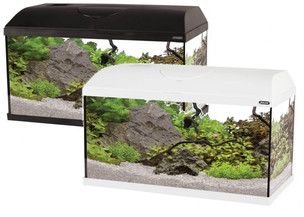 Kit aquarium first 60cm 49l aquarium et meuble for Aquarium zolux