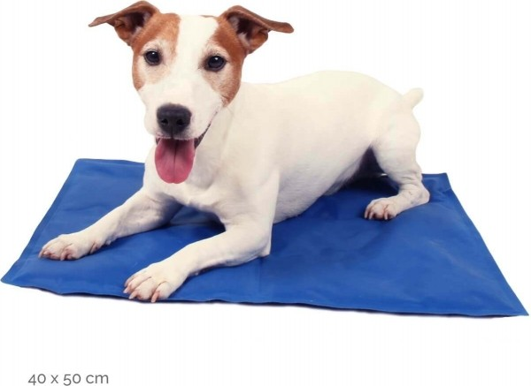 Tapis rafra chissant pour chien et chat yeti relax zolia - Tapis rafraichissant pour chien ...