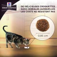 HILL'S Ideal Balance Mature Sans Céréales Poulet & Pommes de terre pour Chat Senior