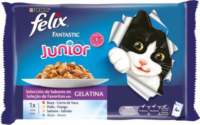 FELIX Fantastic pour chaton