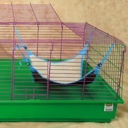 Lit paradise hammock babies
