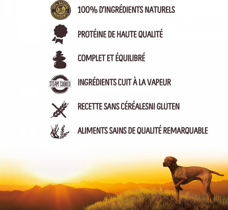 TRUE INSTINCT GF Medium/Maxi pâtée pour chien adulte sans céréales - 2 saveurs au choix