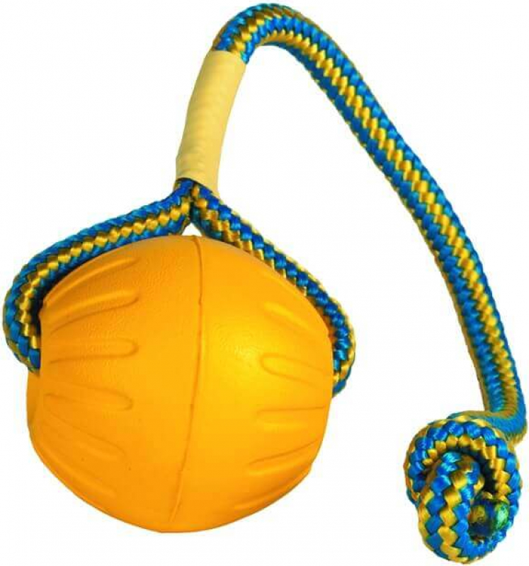 Balle avec corde pour chien Everlasting Swing n Fling Fetch Ball
