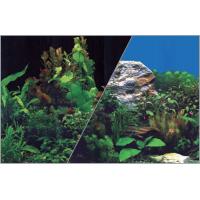 Poster fond décor pour aquarium recto plantes sur fond noir et verso plantes sur fond bleu