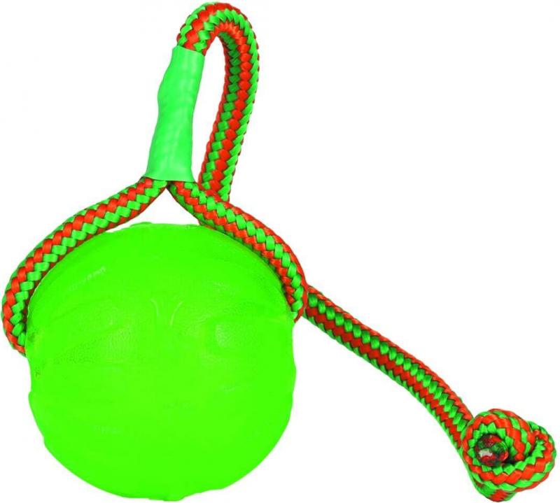 Balle avec corde pour chien Everlasting Swing n Fling Chew ball