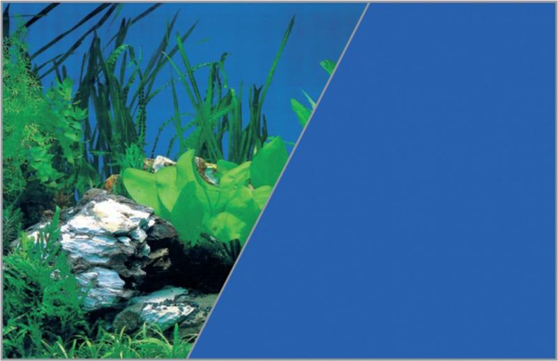 Poster fond décor pour aquarium recto roche plante sur fond bleu et verso bleu