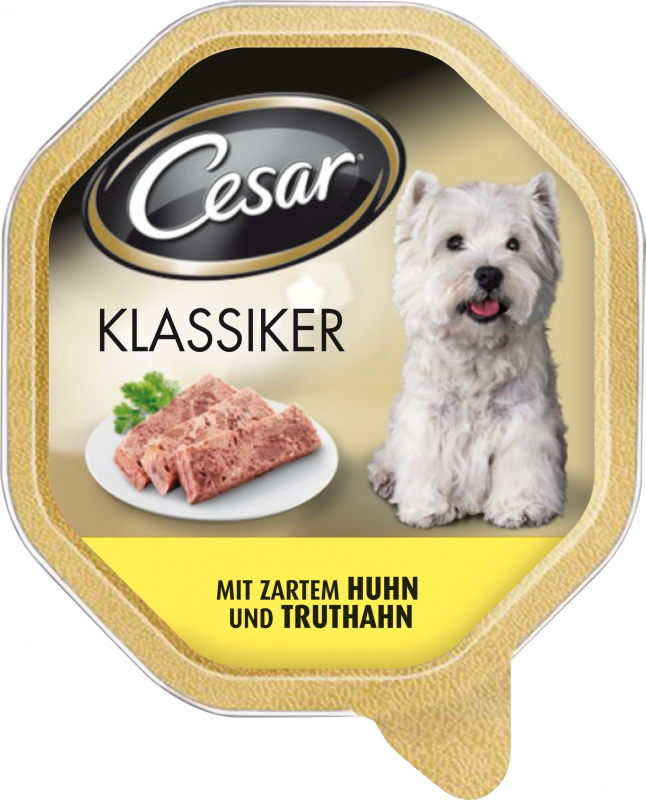 Caesar Hund