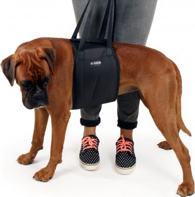 Arnês de elevação para cão
