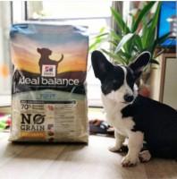 HILL'S-Ideal-Balance-Sans-Cereales-Puppy-Small-&-Medium-Poulet-&-Pomme-de-Terre-pour-Chiot_de_anais_16539646695da0a5ec2209e7.98457376
