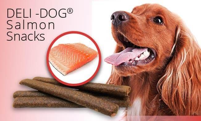 Friandises DELI-DOG Snacks au Saumon pour chien