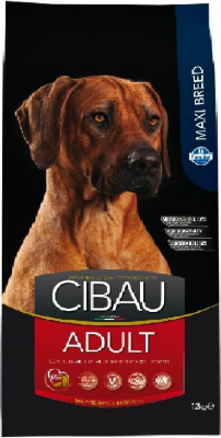 CIBAU Adulte Maxi au Poulet pour Chien de grande taille