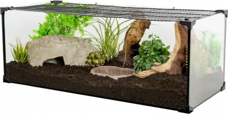Terrario de Karapas para Tortuga terrestre negra - varios tamaños