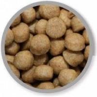 SPECIFIC COD-HY Allergy Management Plus pour Chien et Chiot Sensible