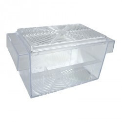 Aquarium fish breeding box separator fish breeding for Fish breeder box
